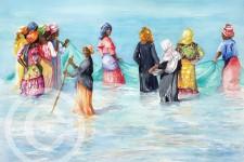 Net Fishing, Zanzibar