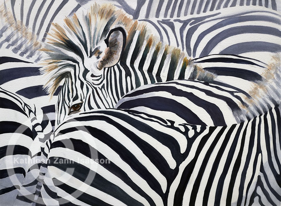 Zebras (Camouflage)